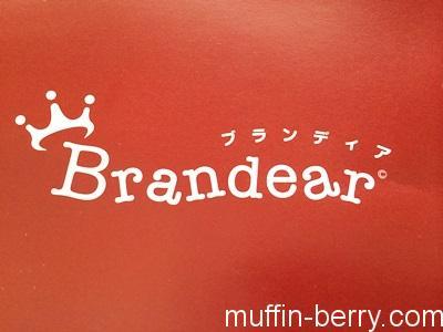 2014-12 brandear1