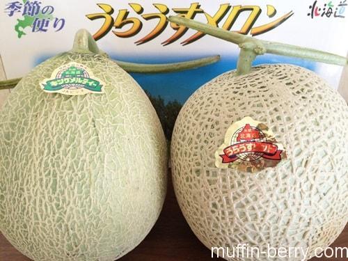 2015-07 melon2-min