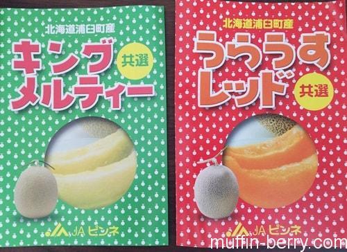 2015-07 melon4-min