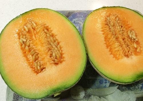 2015-07 melon9-min