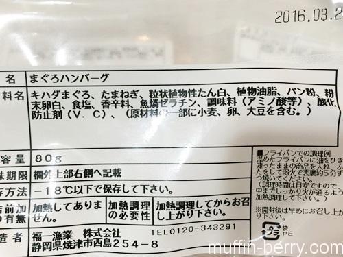 2016-03 yaizu009