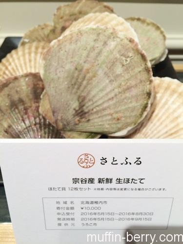 2016-06 satohuru8
