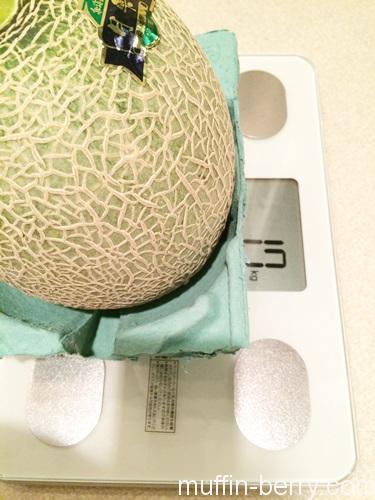 2016-07 melon12