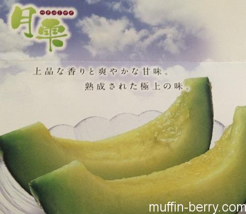 2016-07 melon8