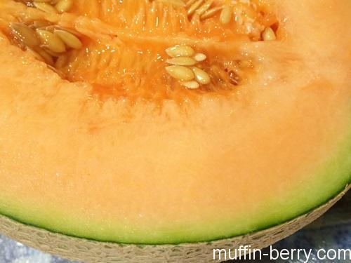 2016-08 melon3